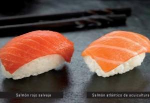 salmon-comparativa1[1]